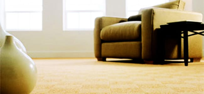 Monavé Carpet Flooring - Occupied Property Installation